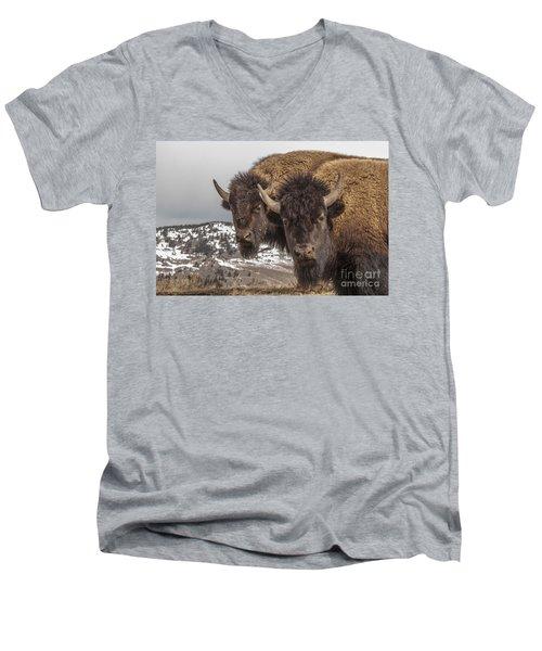 Two Bison Men's V-Neck T-Shirt