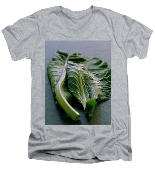 Two Collard Leaves Men's V-Neck T-Shirt