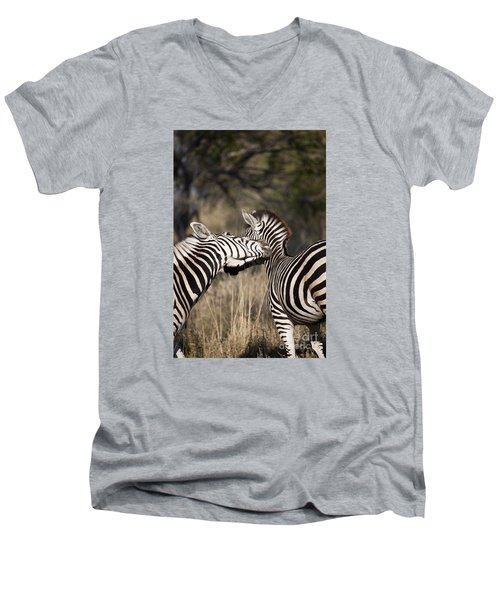 Two Plains Zebra Botswana Men's V-Neck T-Shirt