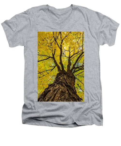 Under The Yellow Canopy Men's V-Neck T-Shirt by Debra Martz