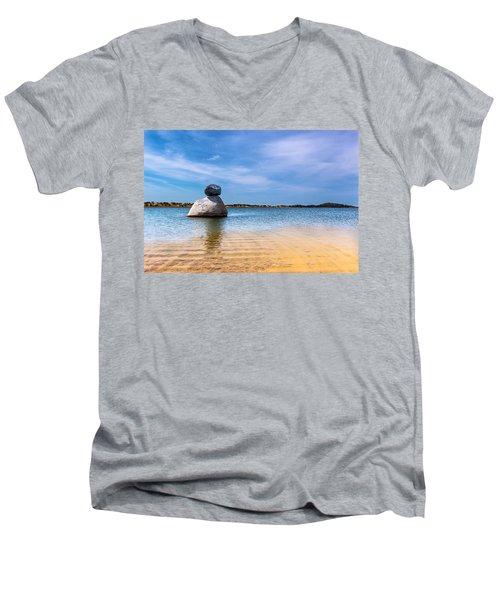 Unstable Equilibrium Men's V-Neck T-Shirt