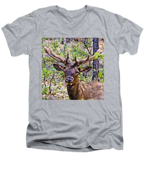 Men's V-Neck T-Shirt featuring the photograph Up Close And Personal With An Elk by Bob and Nadine Johnston