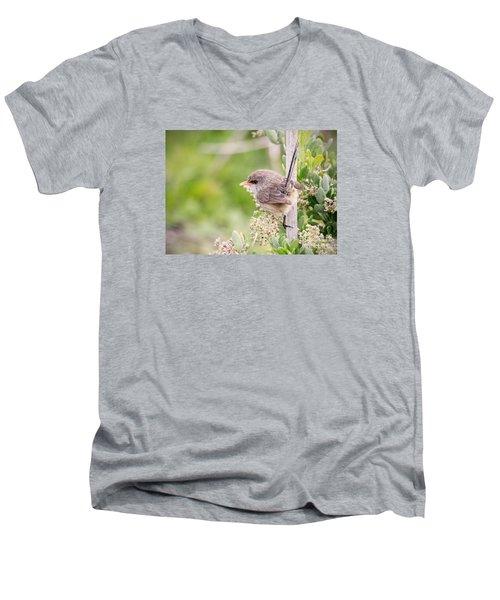 Variegated Fairywren  Men's V-Neck T-Shirt by Kym Clarke