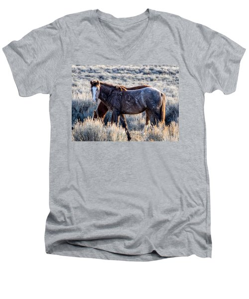 Velvet - Young Colt In Sand Wash Basin Men's V-Neck T-Shirt