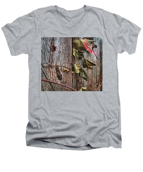 Vines And Barns Men's V-Neck T-Shirt