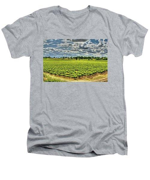 Vineyards Almost Ripe Men's V-Neck T-Shirt