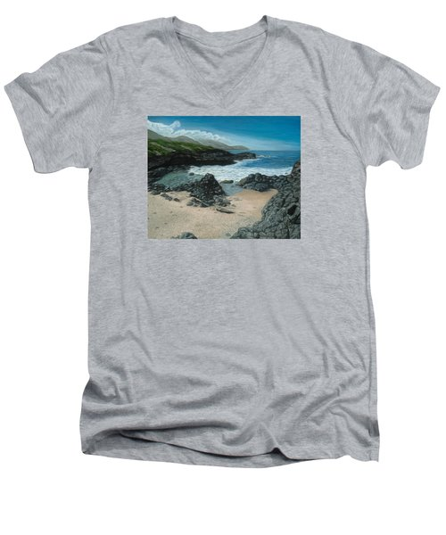 Visitor At Kaena Point Men's V-Neck T-Shirt