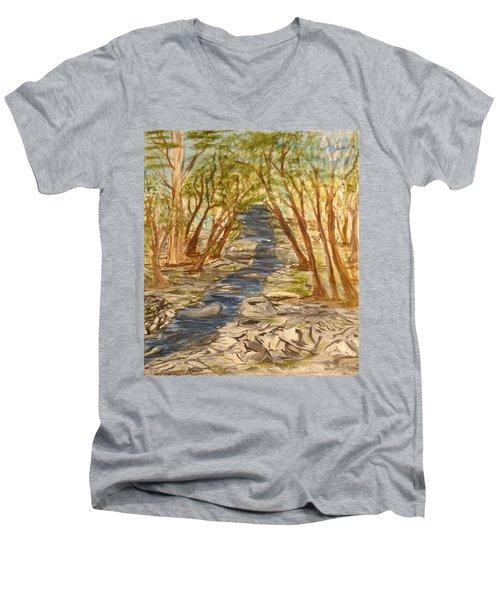Washington Backcountry Men's V-Neck T-Shirt