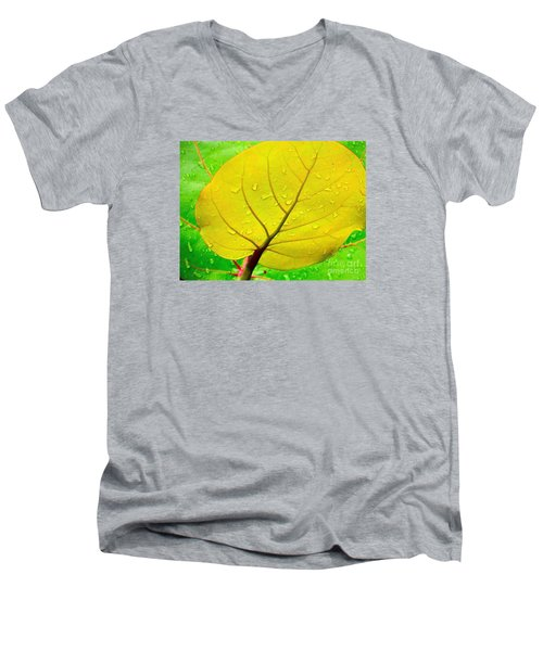 Men's V-Neck T-Shirt featuring the photograph Weathered by Joy Hardee