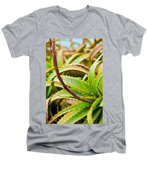 After The Rain Men's V-Neck T-Shirt by Melinda Ledsome