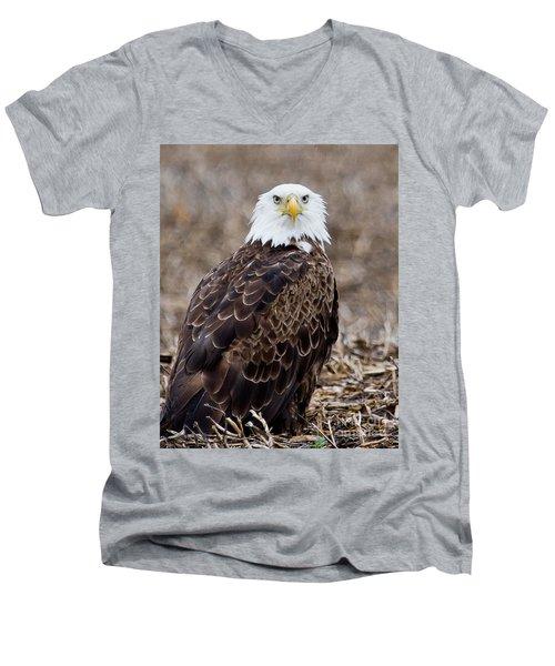 What Men's V-Neck T-Shirt