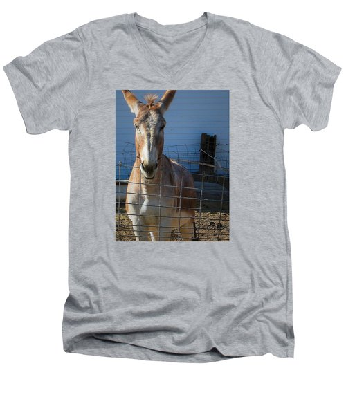 Men's V-Neck T-Shirt featuring the photograph What's Up by Nadalyn Larsen