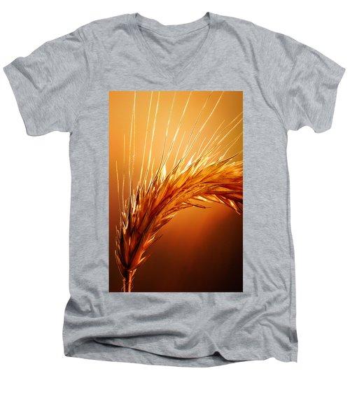 Wheat Close-up Men's V-Neck T-Shirt by Johan Swanepoel