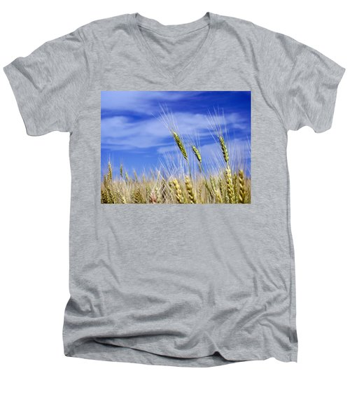 Men's V-Neck T-Shirt featuring the photograph Wheat Trio by Keith Armstrong