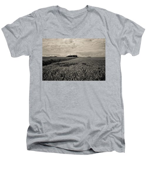 Wheatfields Men's V-Neck T-Shirt