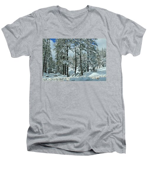 Whispering Snow Men's V-Neck T-Shirt