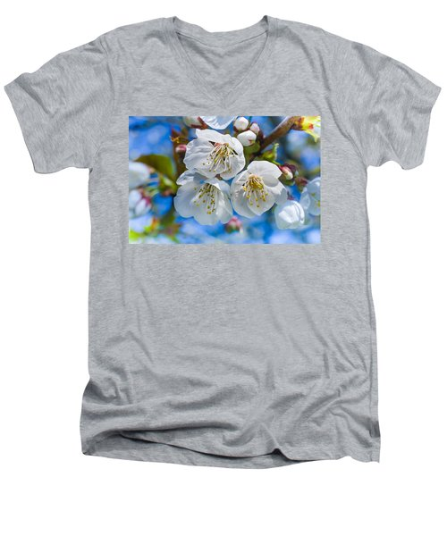 White Cherry Blossoms Blooming In The Springtime Men's V-Neck T-Shirt