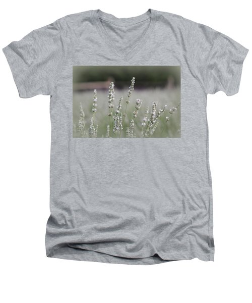 Men's V-Neck T-Shirt featuring the photograph White Lavender by Lynn Sprowl
