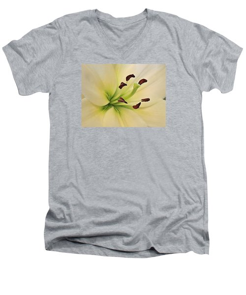 White Lily Pp-6 Men's V-Neck T-Shirt