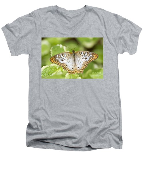 White Peacock Men's V-Neck T-Shirt by Bryan Keil