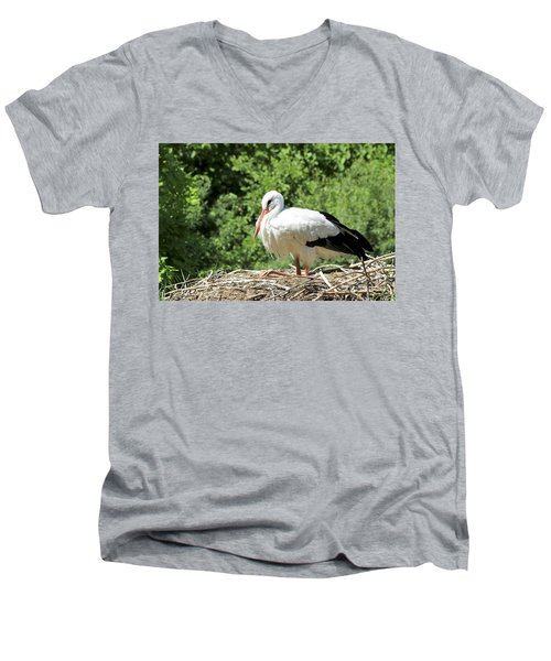 Men's V-Neck T-Shirt featuring the photograph White Stork  by Teresa Zieba