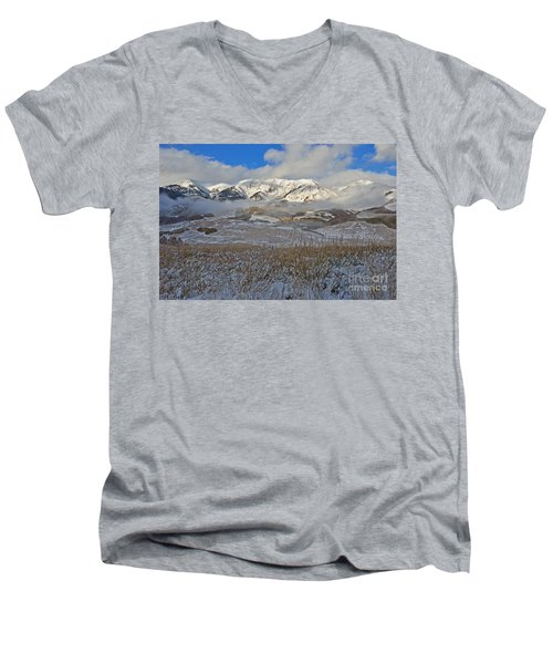 Whiterock Winter Mist Men's V-Neck T-Shirt