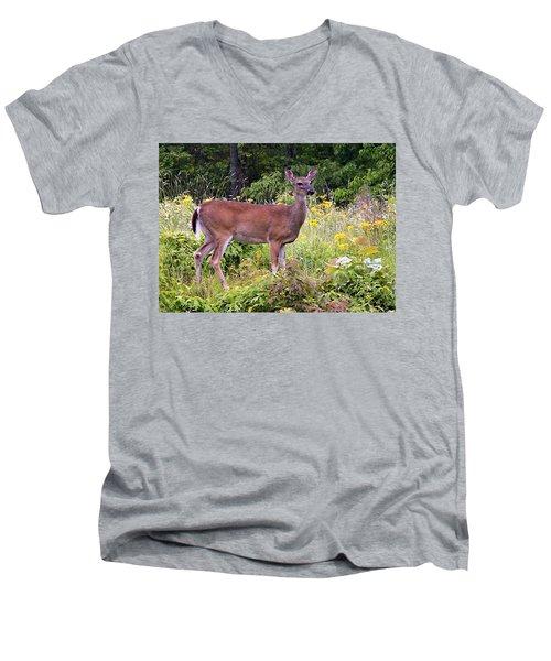 Whitetail Deer Men's V-Neck T-Shirt