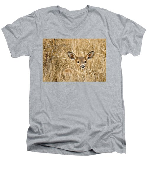 Whitetail In Weeds Men's V-Neck T-Shirt