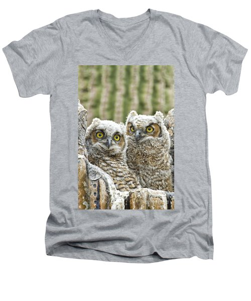 Who's There? Men's V-Neck T-Shirt