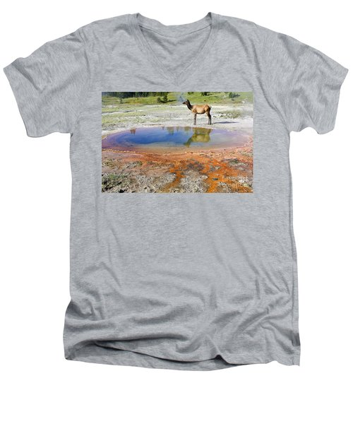 Men's V-Neck T-Shirt featuring the photograph Wild And Free In Yellowstone by Teresa Zieba