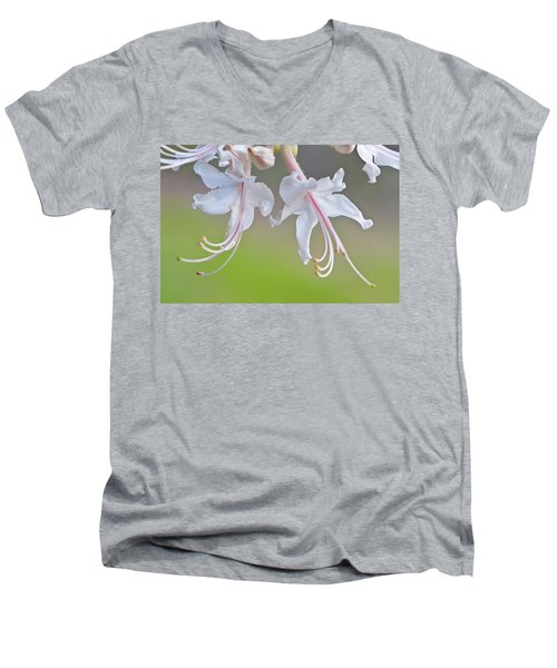 Wild Azalea Men's V-Neck T-Shirt