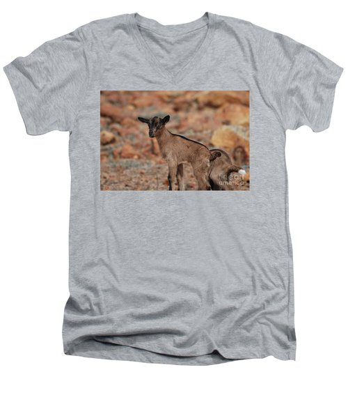Wild Baby Goat Men's V-Neck T-Shirt by DejaVu Designs