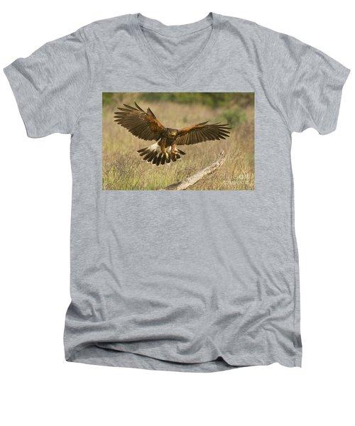 Wild Harris Hawk Landing Men's V-Neck T-Shirt