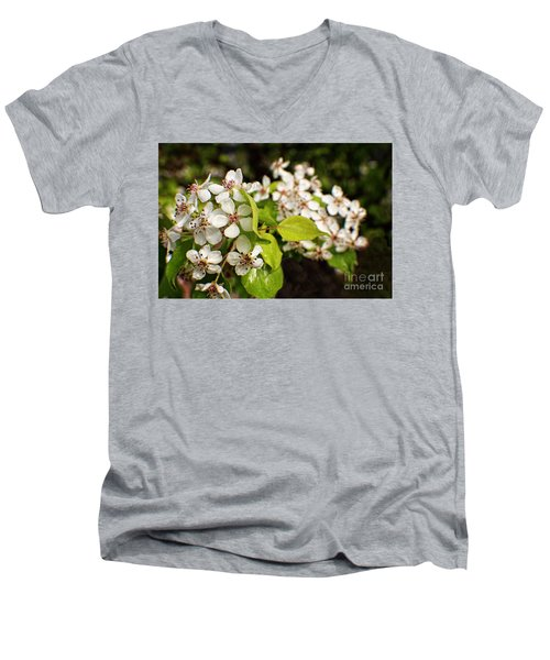 Wild Plum Blossoms Men's V-Neck T-Shirt