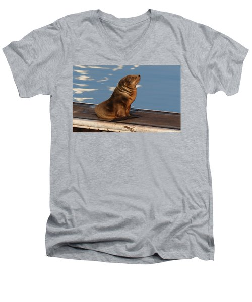 Wild Pup Sun Bathing - 2 Men's V-Neck T-Shirt