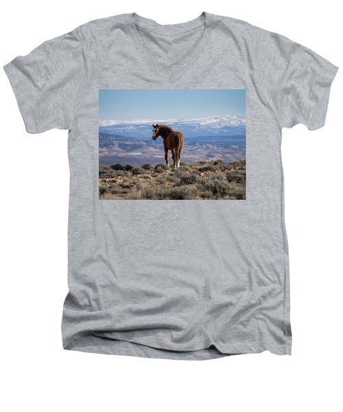 Wild Stallion Of Sand Wash Basin Men's V-Neck T-Shirt