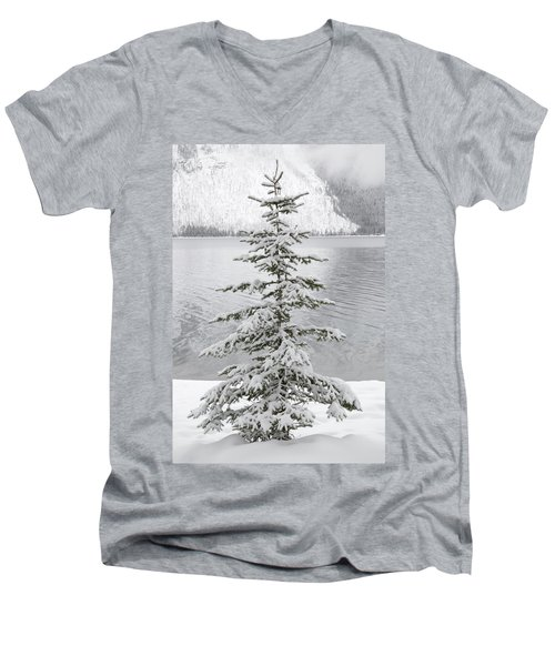 Winter Decor Men's V-Neck T-Shirt