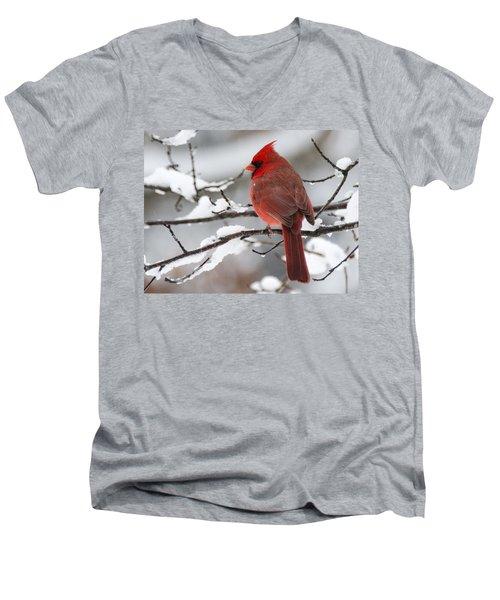 Winter In Red Men's V-Neck T-Shirt