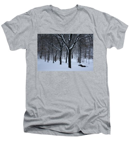 Men's V-Neck T-Shirt featuring the photograph Winter In The Park by Dora Sofia Caputo Photographic Art and Design