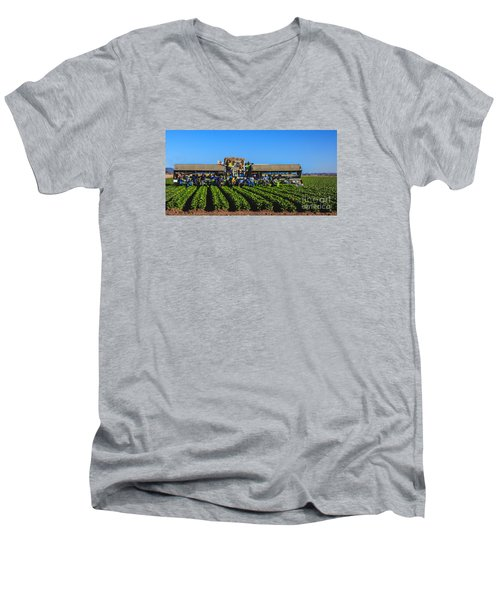 Winter Lettuce Harvest Men's V-Neck T-Shirt by Robert Bales