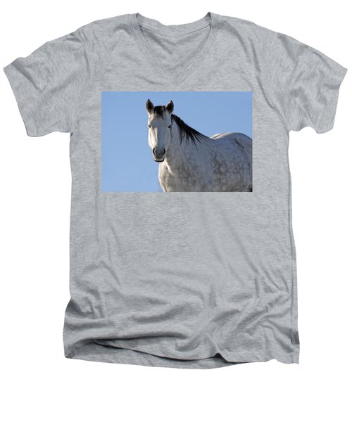 Winter Pony Men's V-Neck T-Shirt