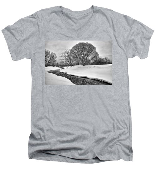 Winter Stream Men's V-Neck T-Shirt