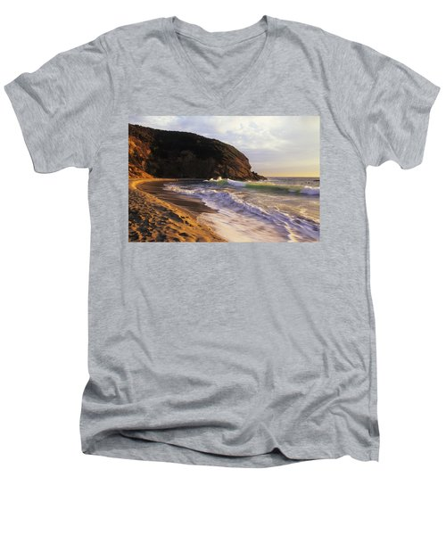 Winter Swells Strands Beach Men's V-Neck T-Shirt