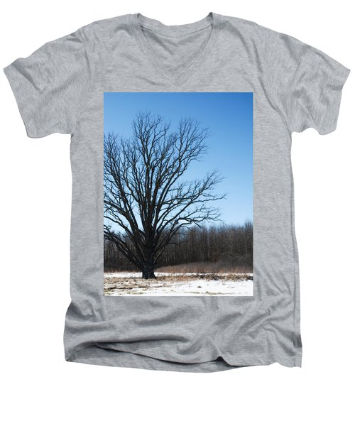 Winter Tree Men's V-Neck T-Shirt