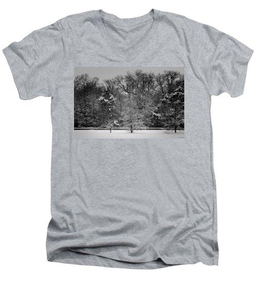 Wonderland Men's V-Neck T-Shirt