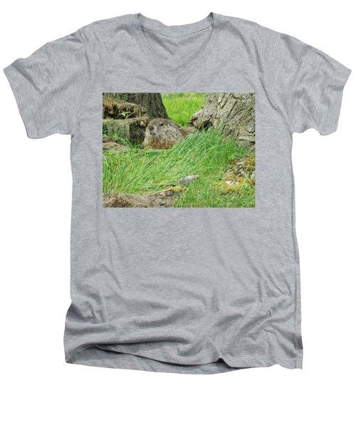 Woodchuck 2 Men's V-Neck T-Shirt