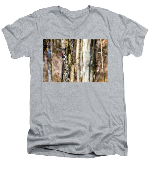 Men's V-Neck T-Shirt featuring the photograph Woody by Sennie Pierson