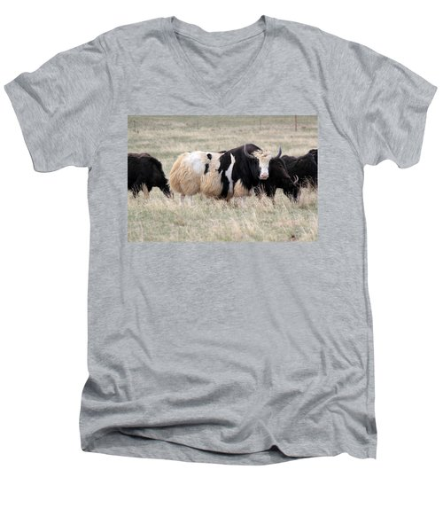 Yak Yak Yak Men's V-Neck T-Shirt