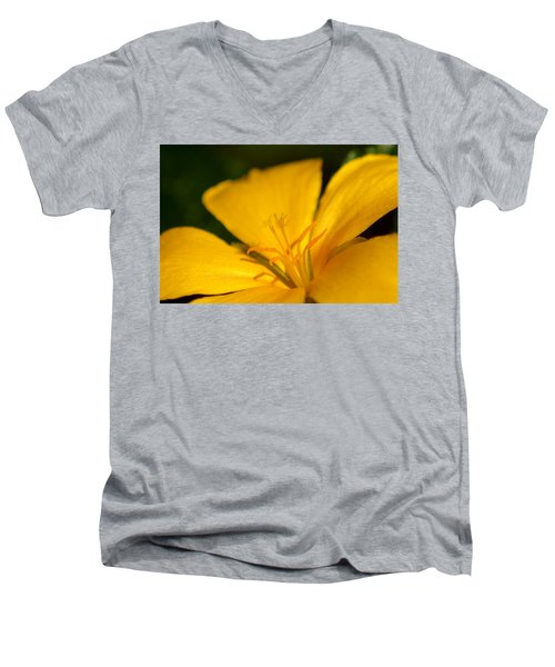 Yellow Men's V-Neck T-Shirt by Greg Allore