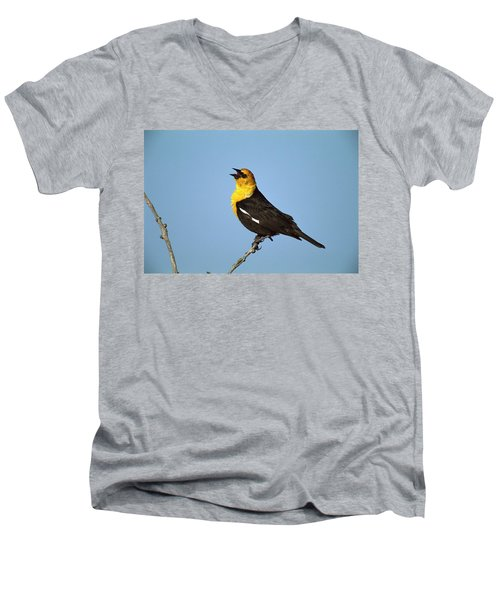 Yellow-headed Blackbird Singing Men's V-Neck T-Shirt by Tom Vezo